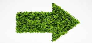 sustainable-leadership-300x140_c.jpg